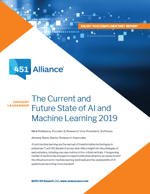 The Current and Future State of AI and Machine Learning